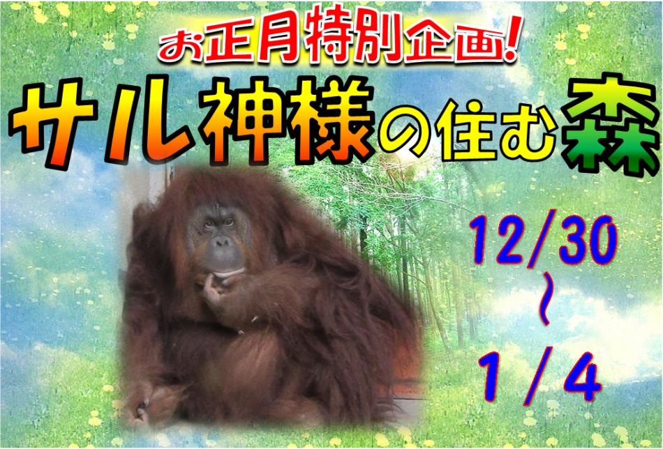 お正月イベントがいっぱい★