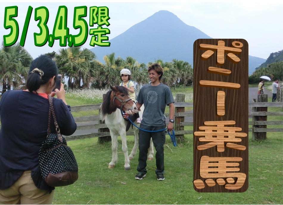 ドキドキ乗馬体験★